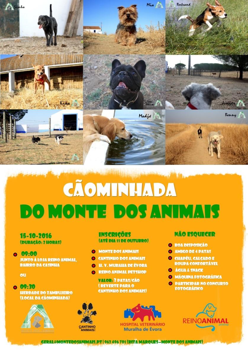 caominhada-do-monte